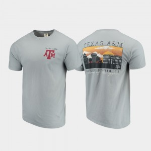 Texas A&M Aggies For Men Comfort Colors Campus Scenery T-Shirt - Gray